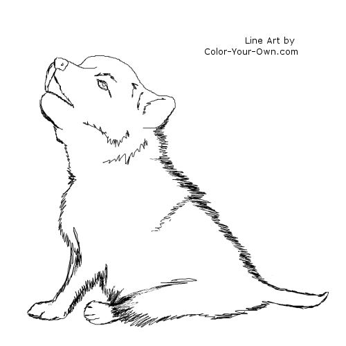 intricate wolf pup coloring pages - photo#35