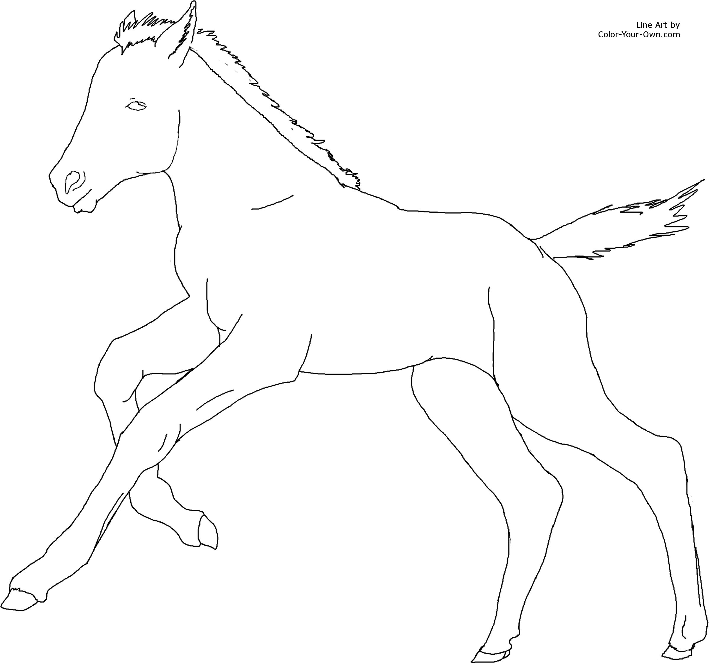 Cantering Foal Coloring Page