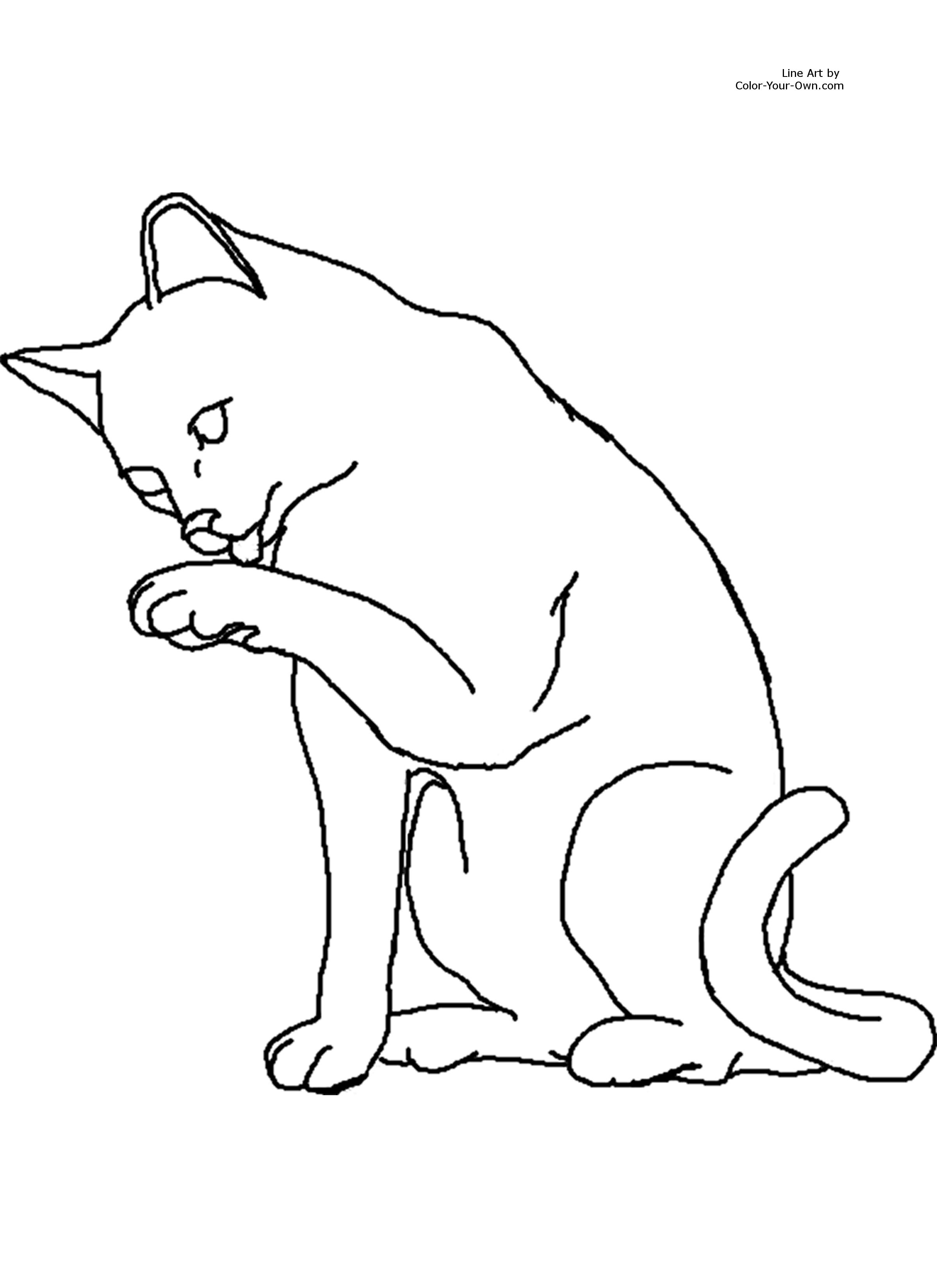 Image Result For Pete Cat Coloring Pageo Kitty