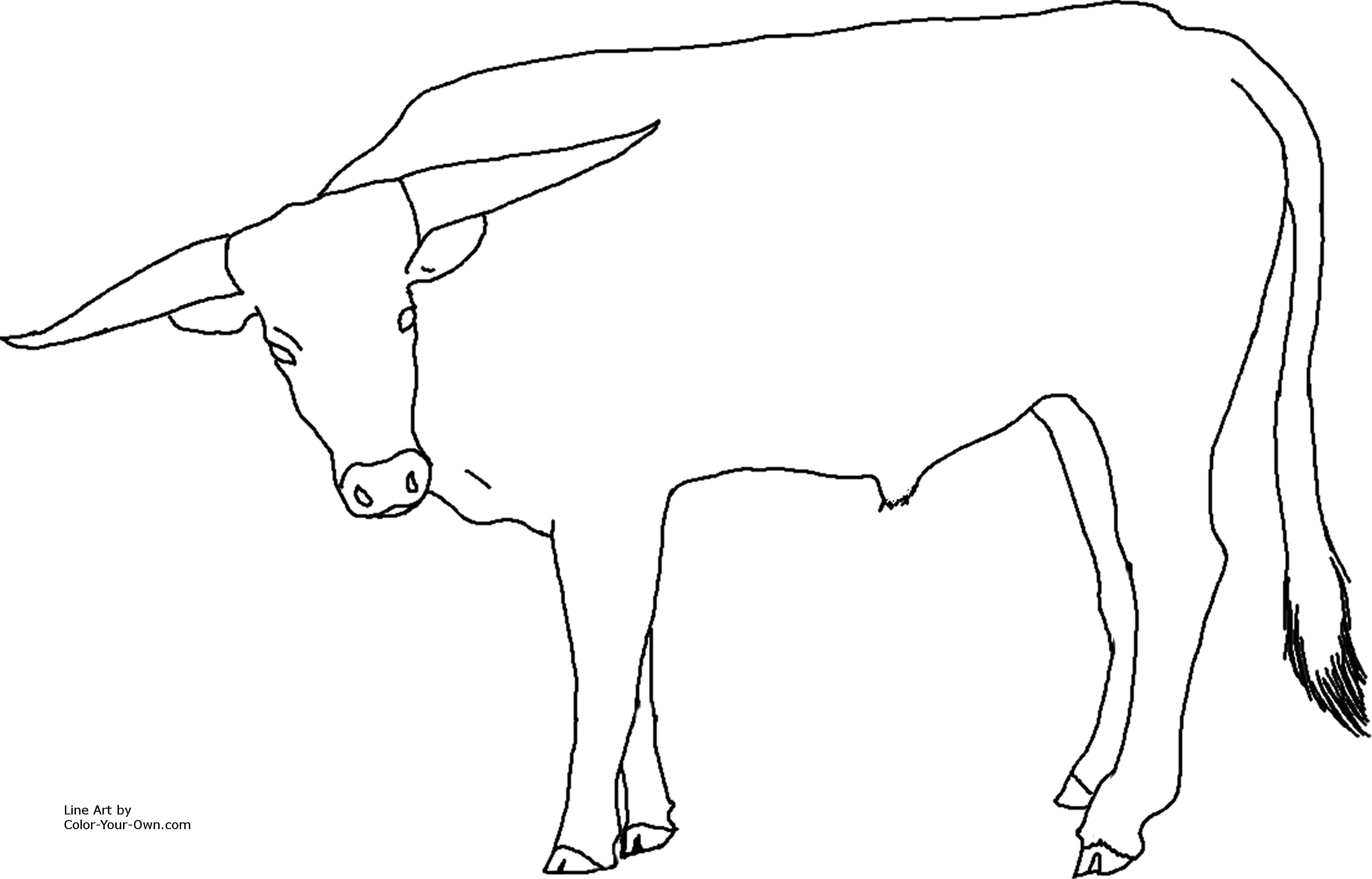 printable texas longhorn coloring pages - photo#9