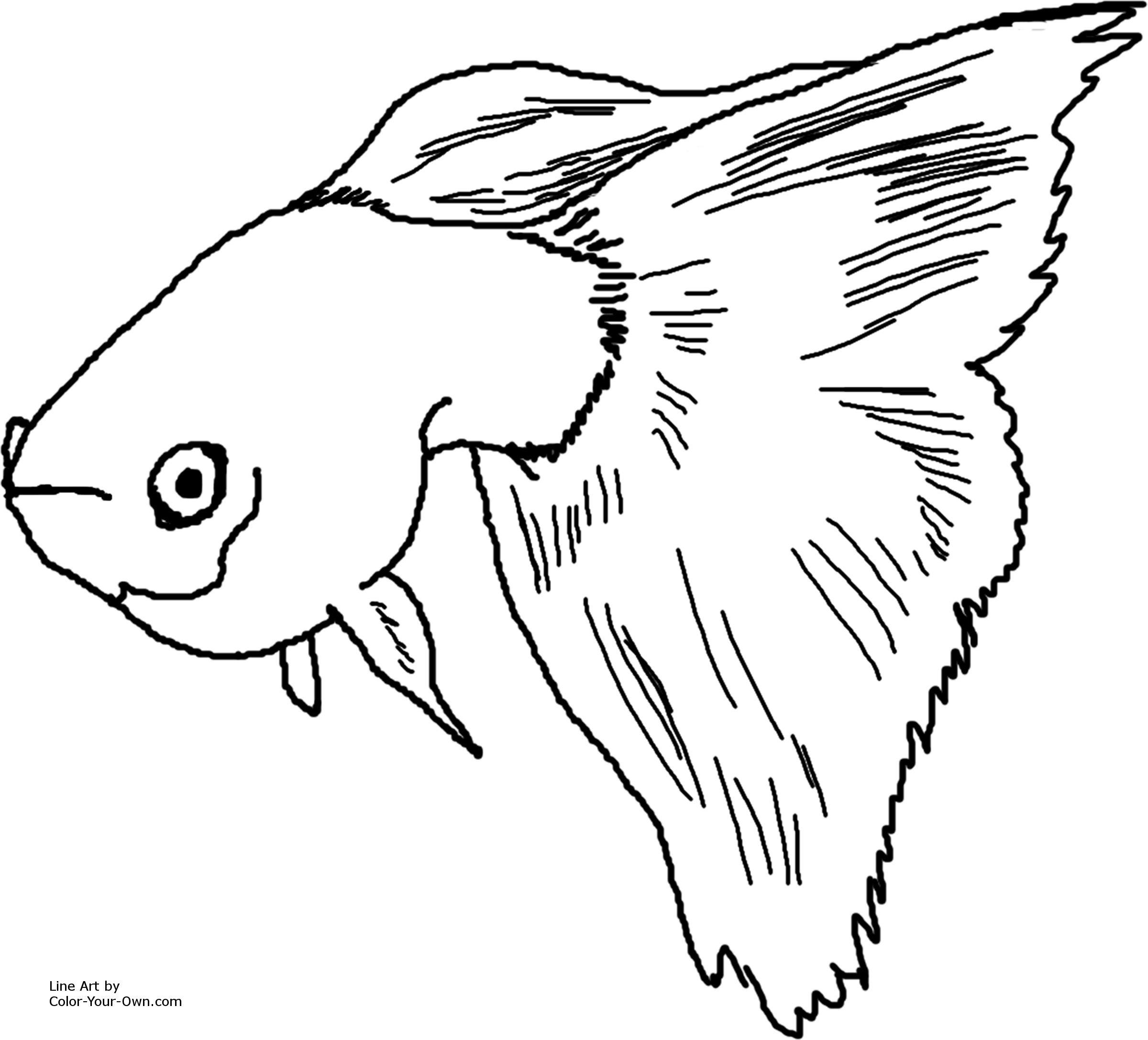guppy fish coloring pages coloring pages