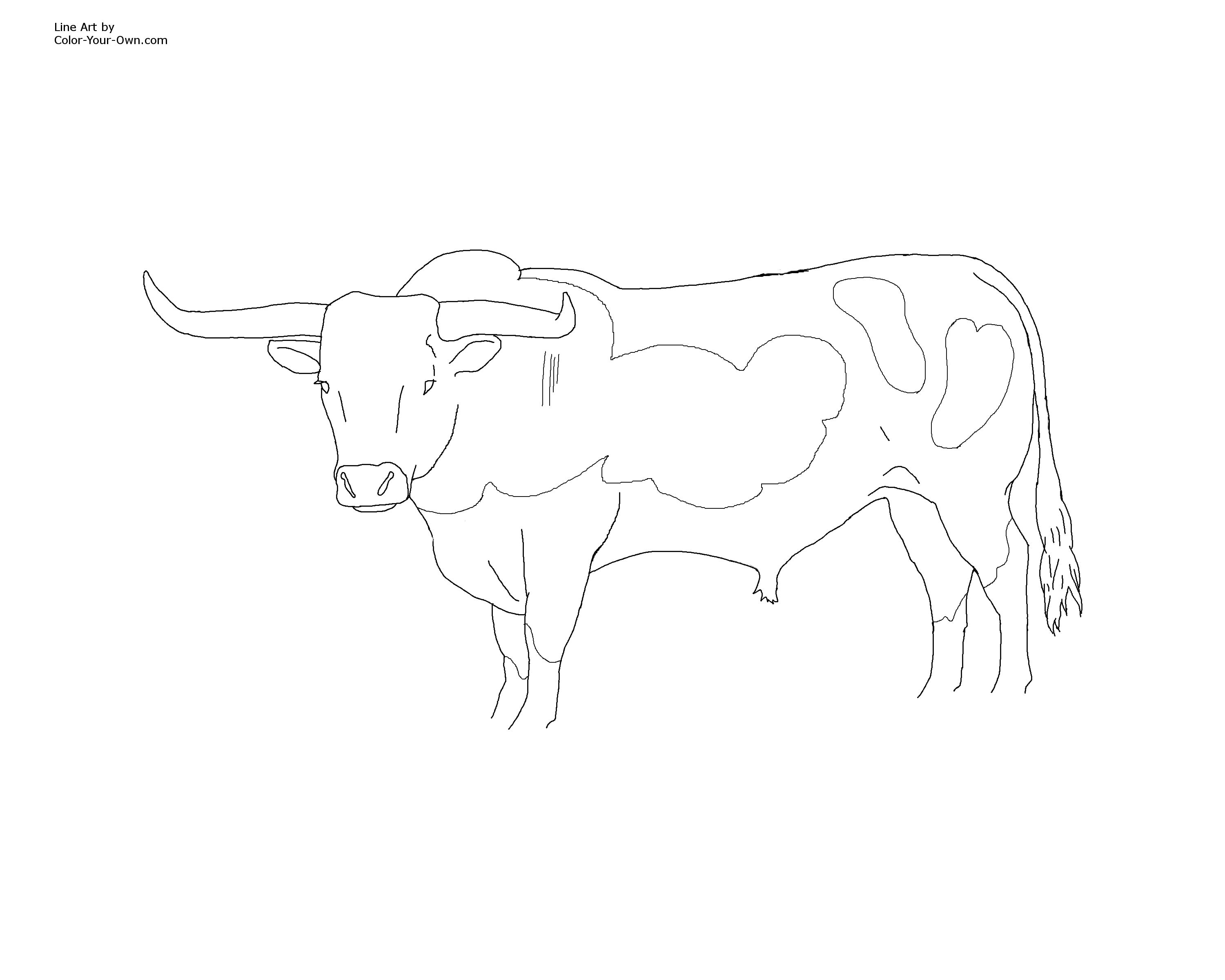 printable texas longhorn coloring pages - photo#6