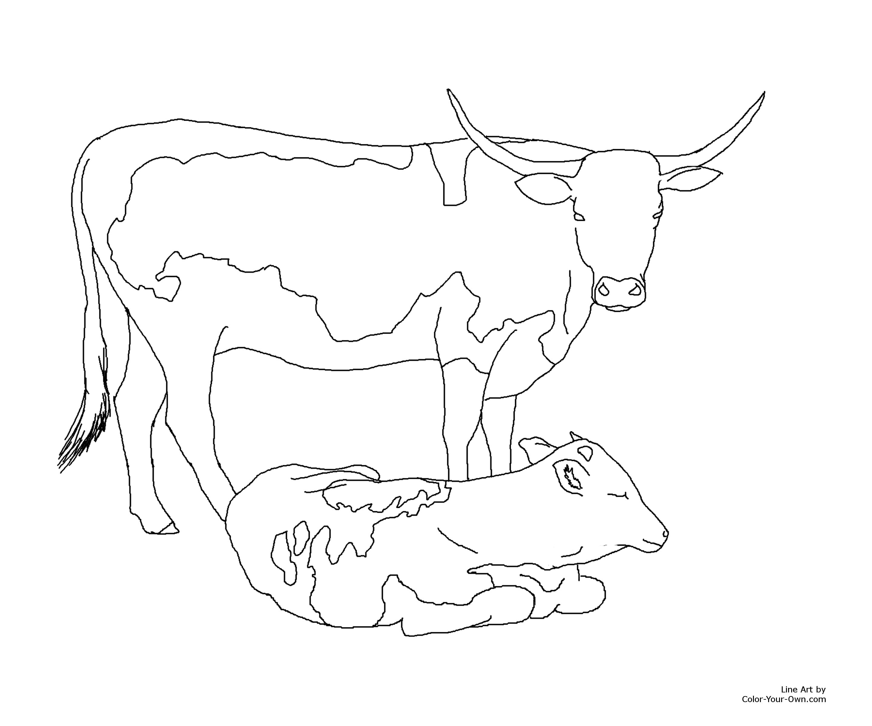 Longhorn Cow And Calf Coloring Page Longhorns Coloring Pages