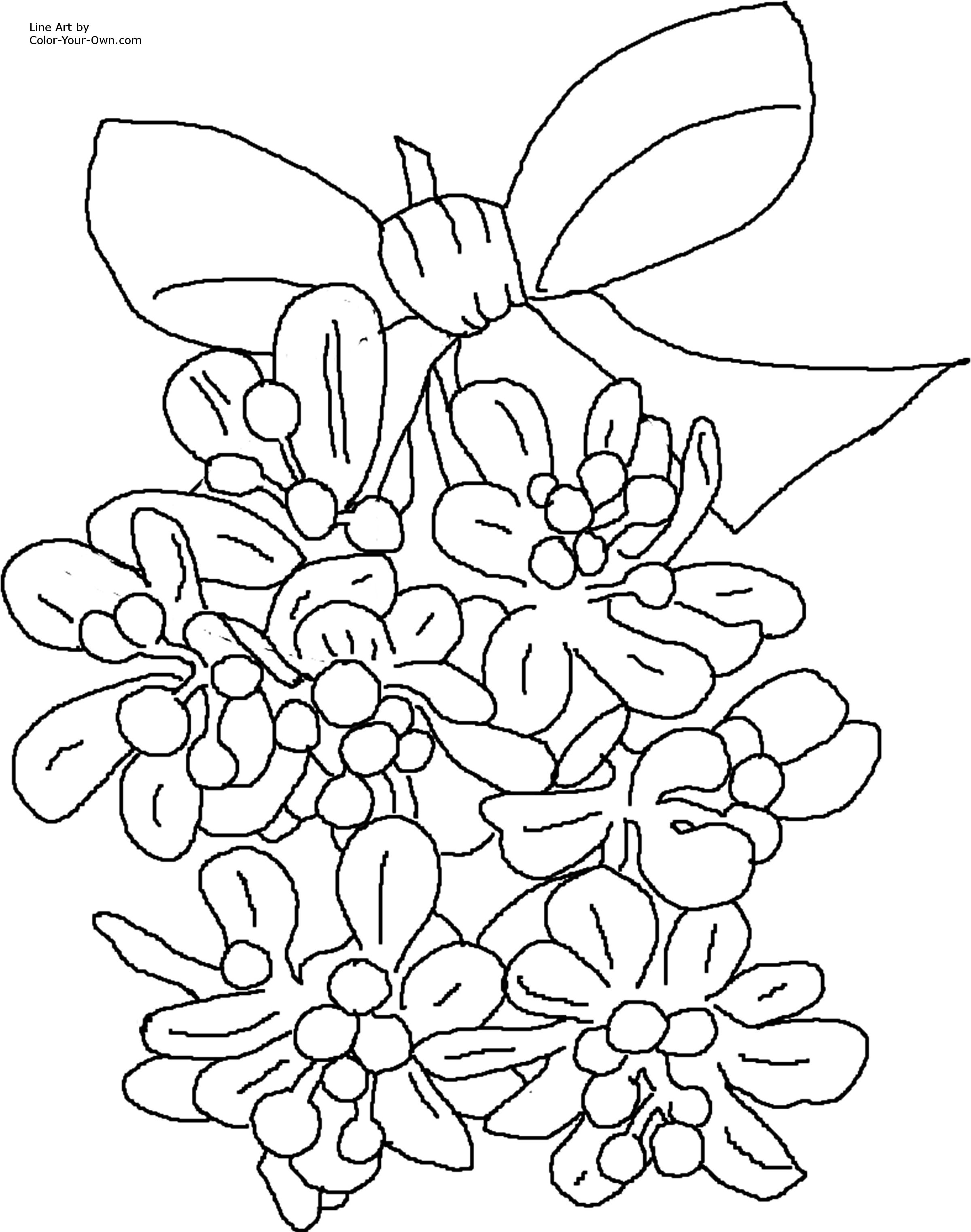Christmas Mistletoe Coloring Page