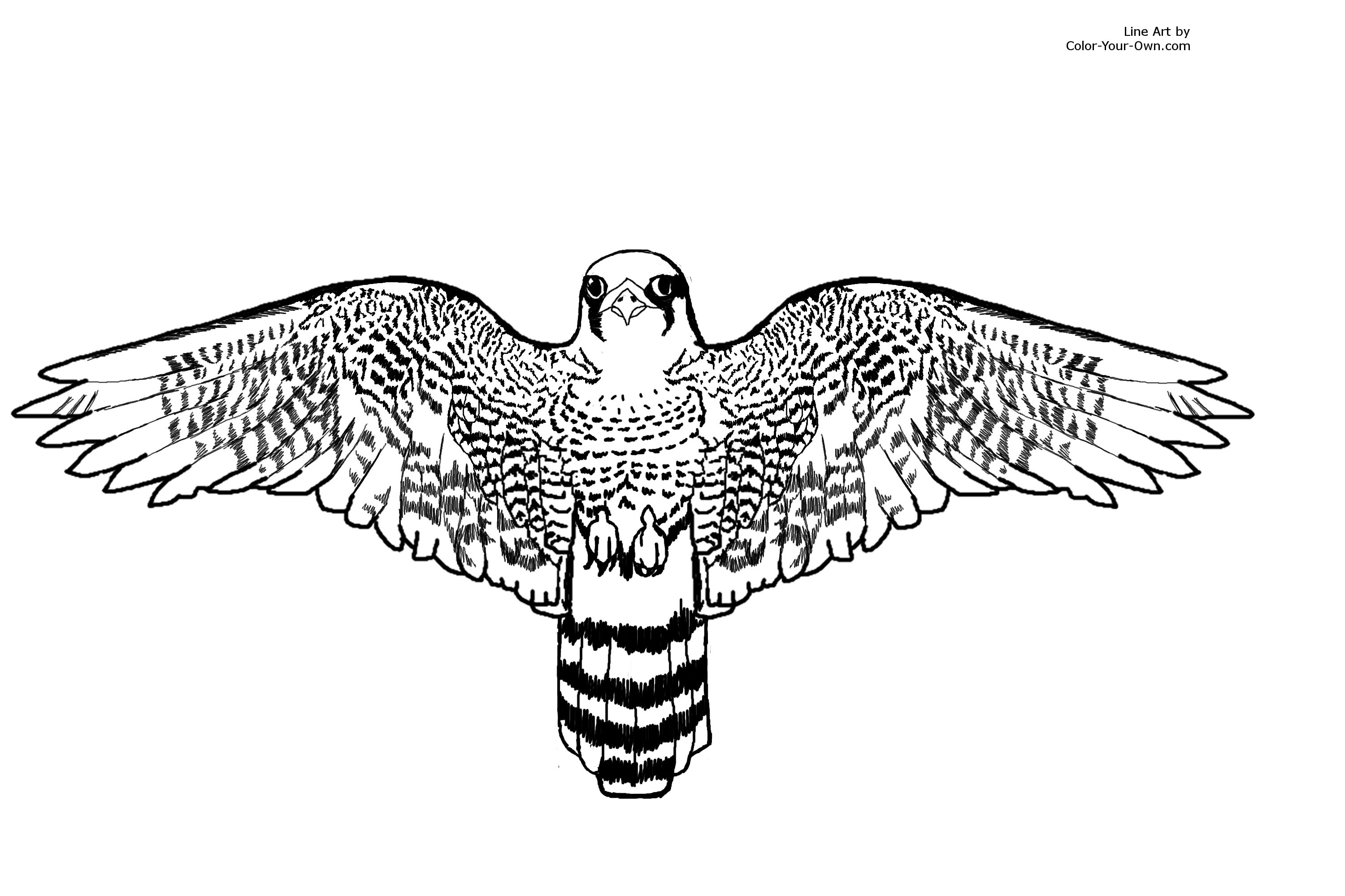 falcon avengers coloring pages - photo#35