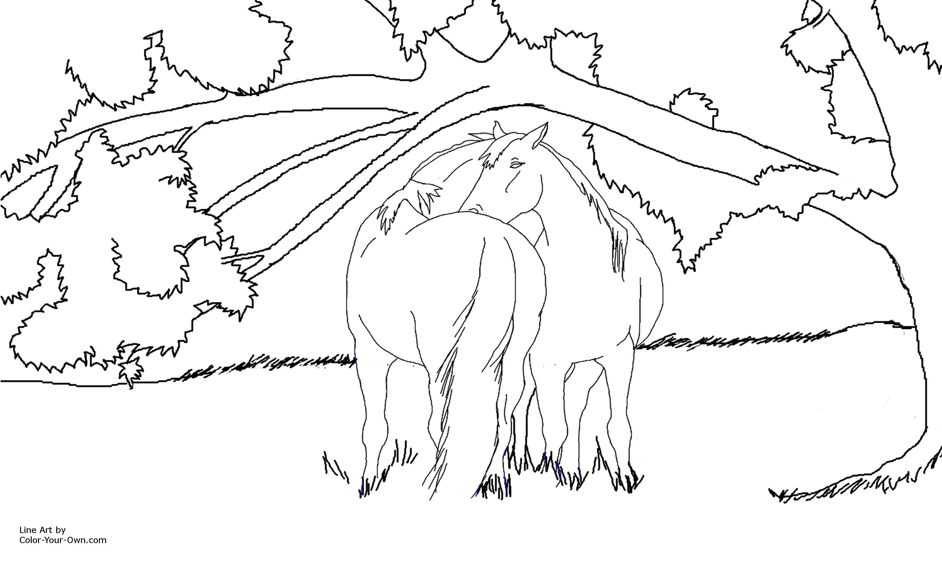 Free Horse Stables Coloring Pages