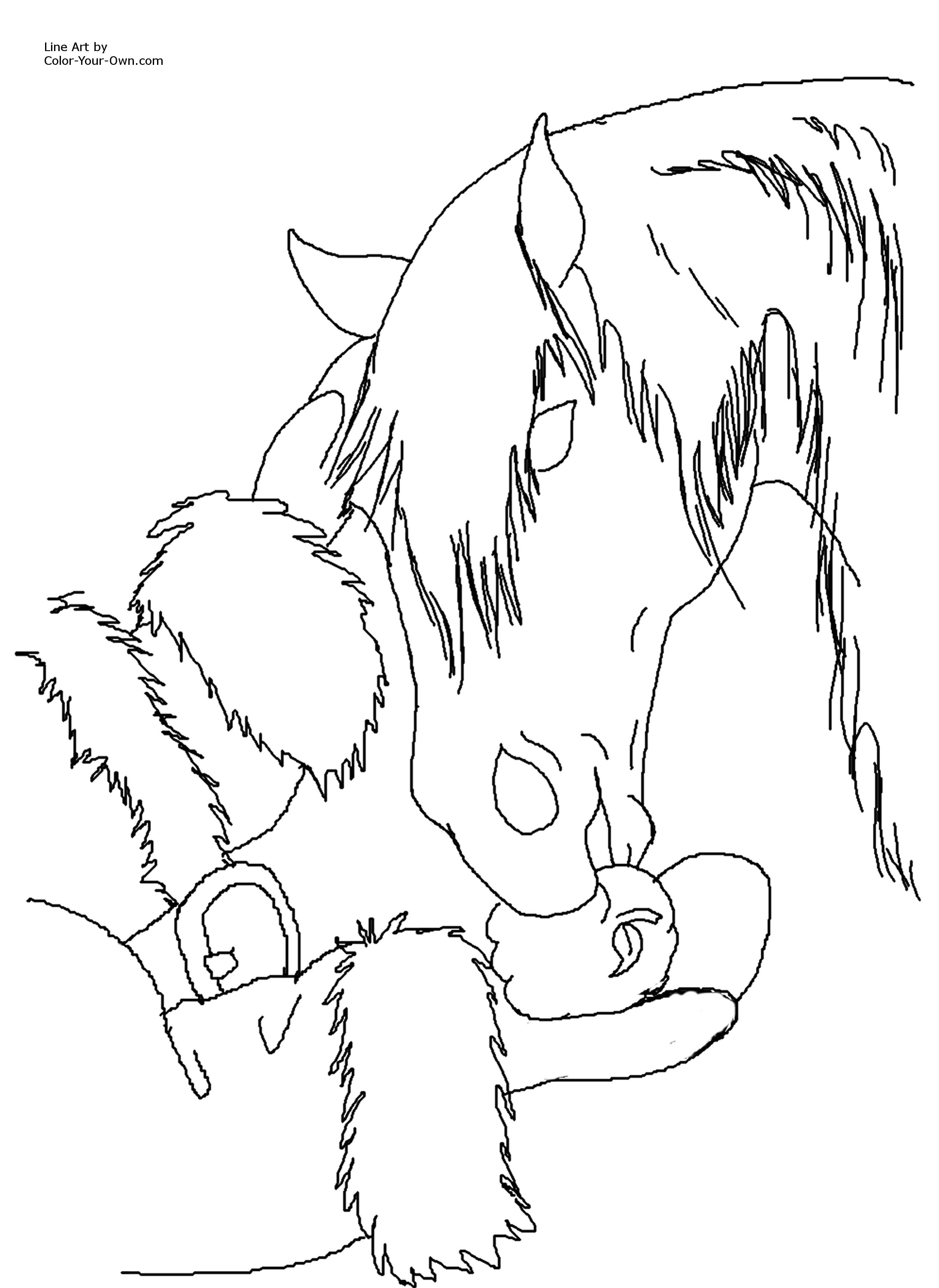 Free coloring horse pictures to print - Click Here For The Free Printable Coloring Page For 8 5 By 11 Inch Paper Then Click Print On Your Browser