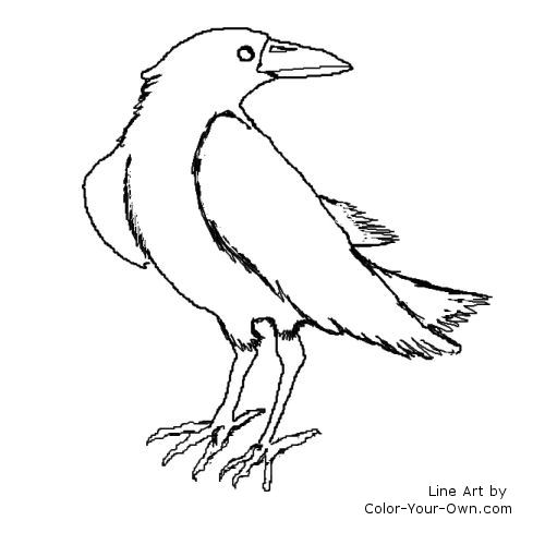 Ravens kids coloring pages ~ Raven Coloring Page