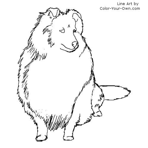 sheep and dogs coloring pages - photo#8