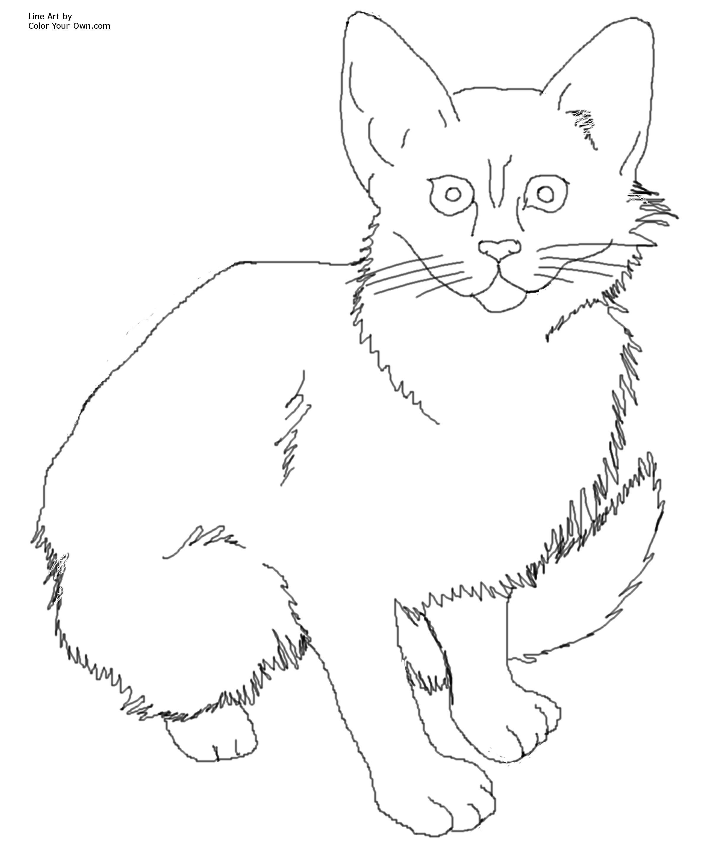 Realistic Kitten Coloring Pages