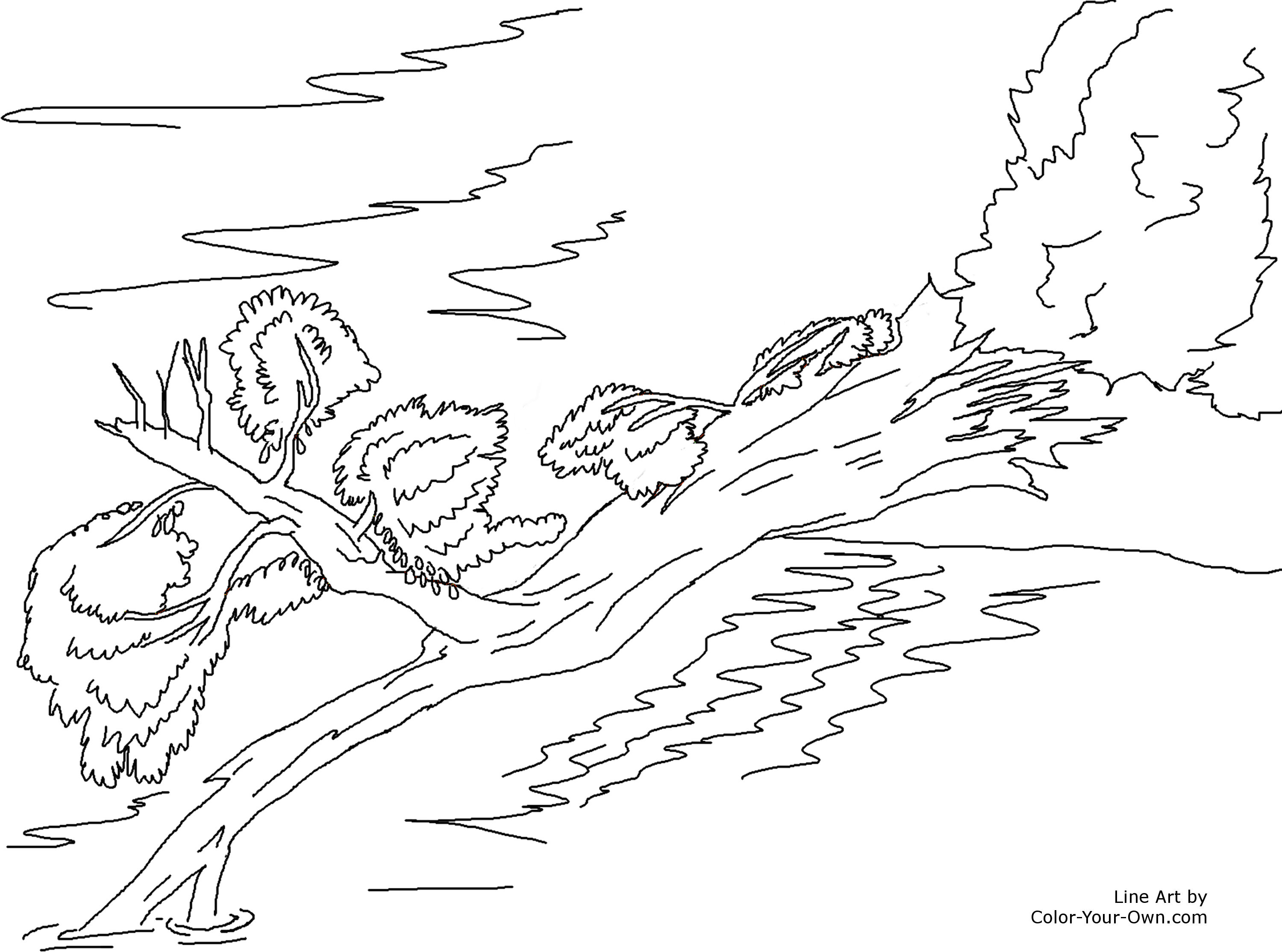 Stream Coloring Pages