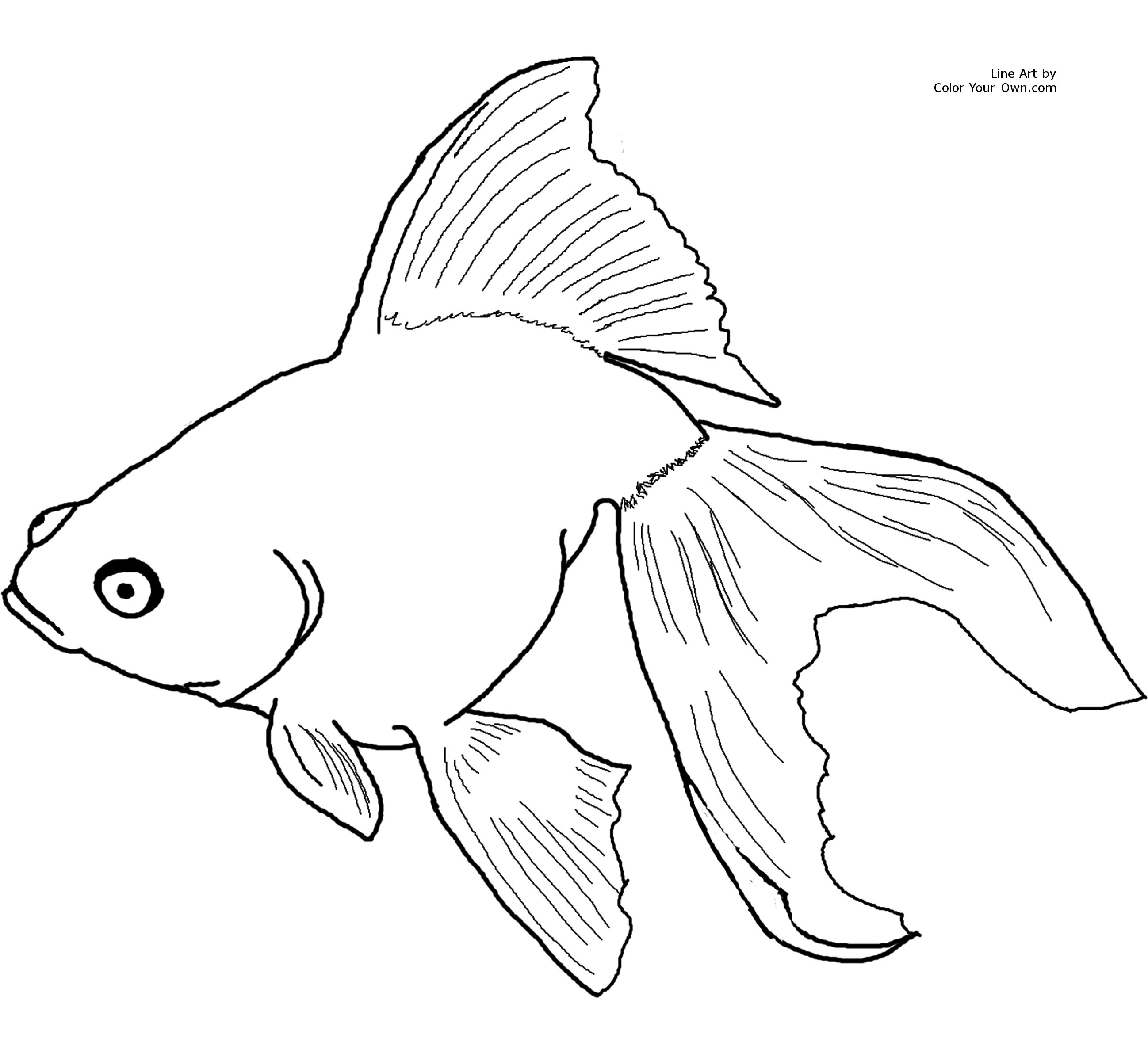 Goldfish Coloring Book Page | Coloring Pages